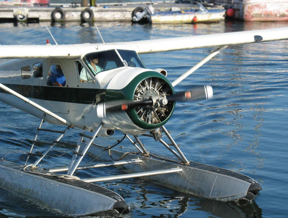 Seaplanes are a type of aircraft that can take off and alight in water.