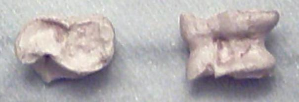Bones of animals were originally shaped for use in knucklebones.