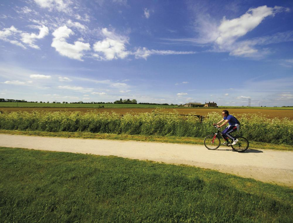 Biking regularly is one way to condition the body.