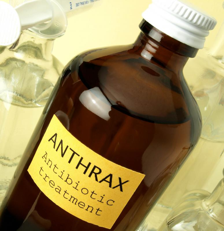 Both ciprofloxacin and amoxicillin are possible treatments for anthrax.