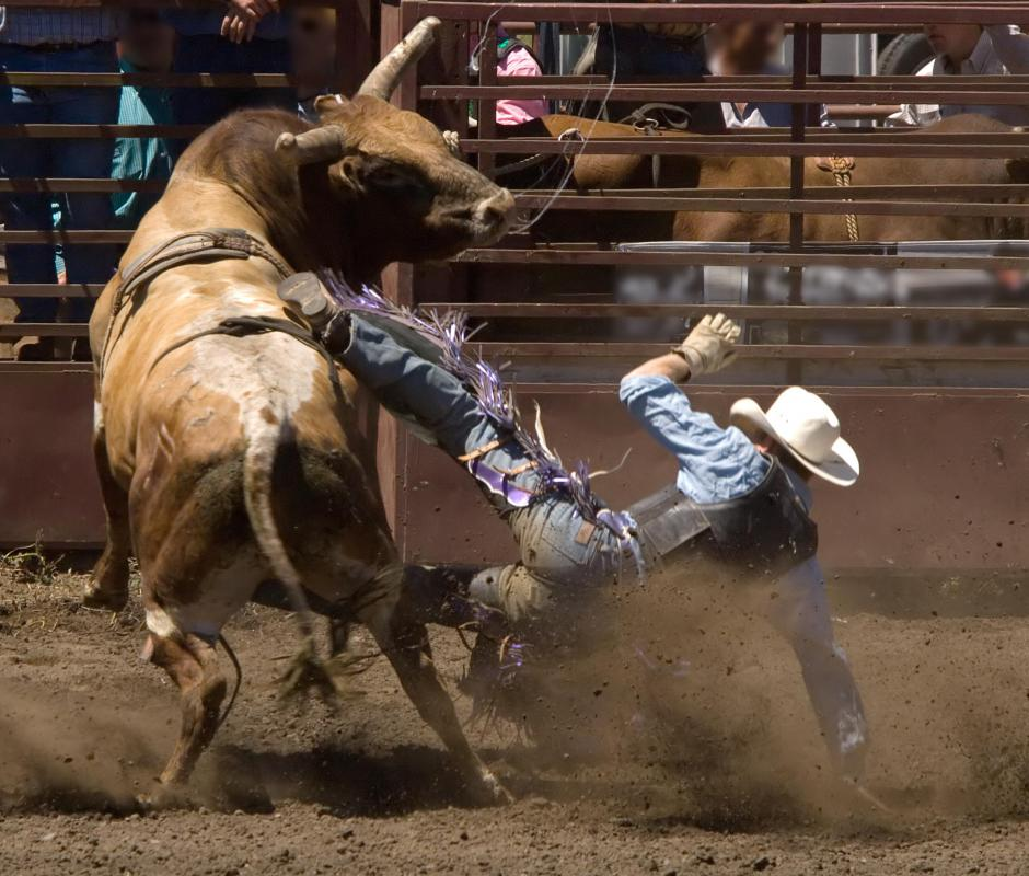 Bull riders can incur broken bones, ruptured organs, and even death.