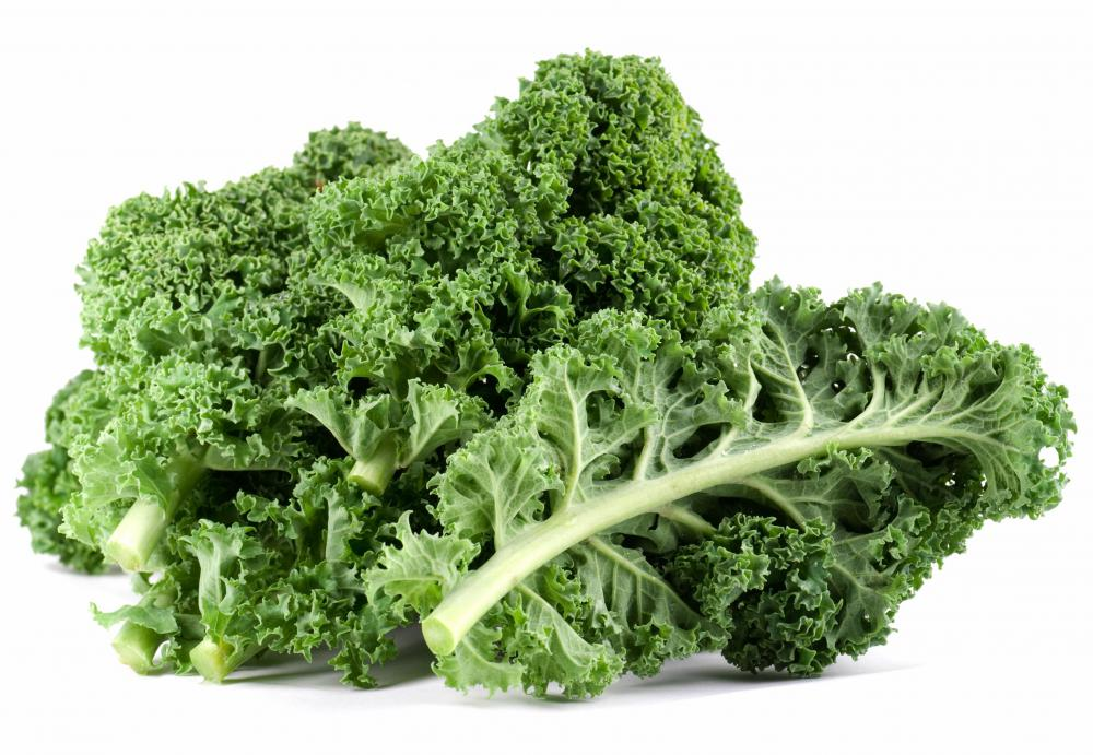 Kale, which contains lutein.
