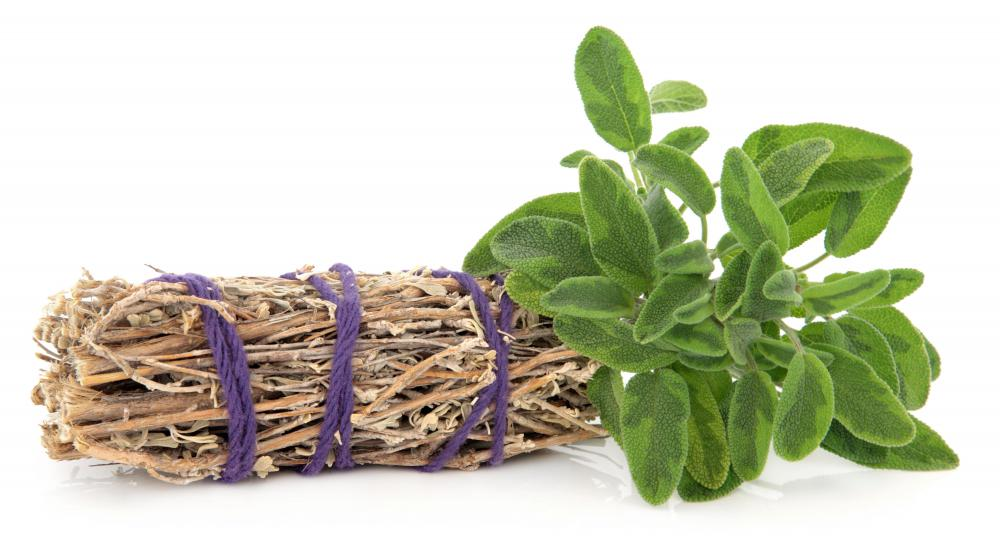 Sage may be purchased in a bundle at Native American or New Age stores.