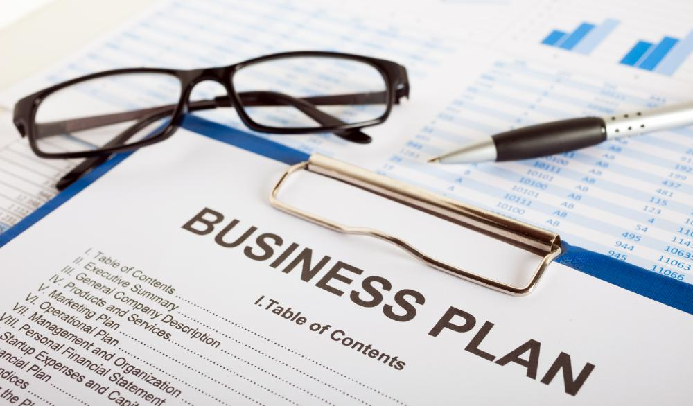 Establishing a business plan outlines the mission and purpose of a business venture.