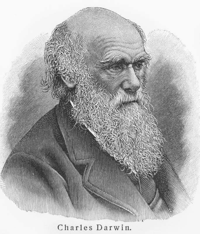Charles Darwin was part of the Enlightenment.