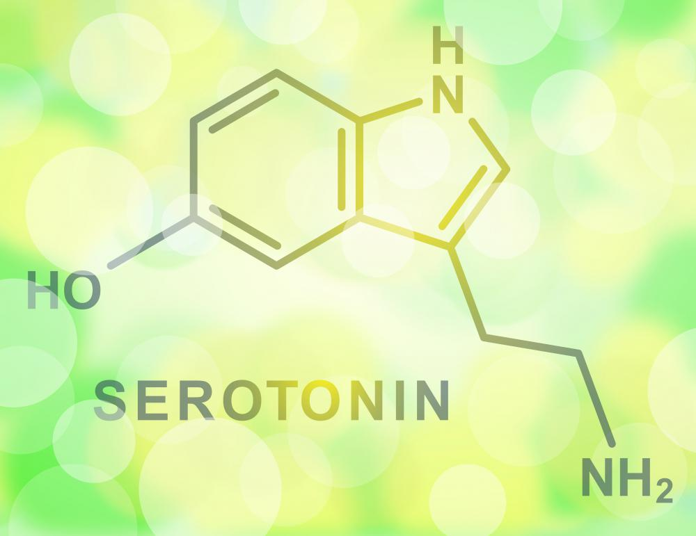 Tryptophan is an essential amino acid, and is well-known for its role in producing serotonin.