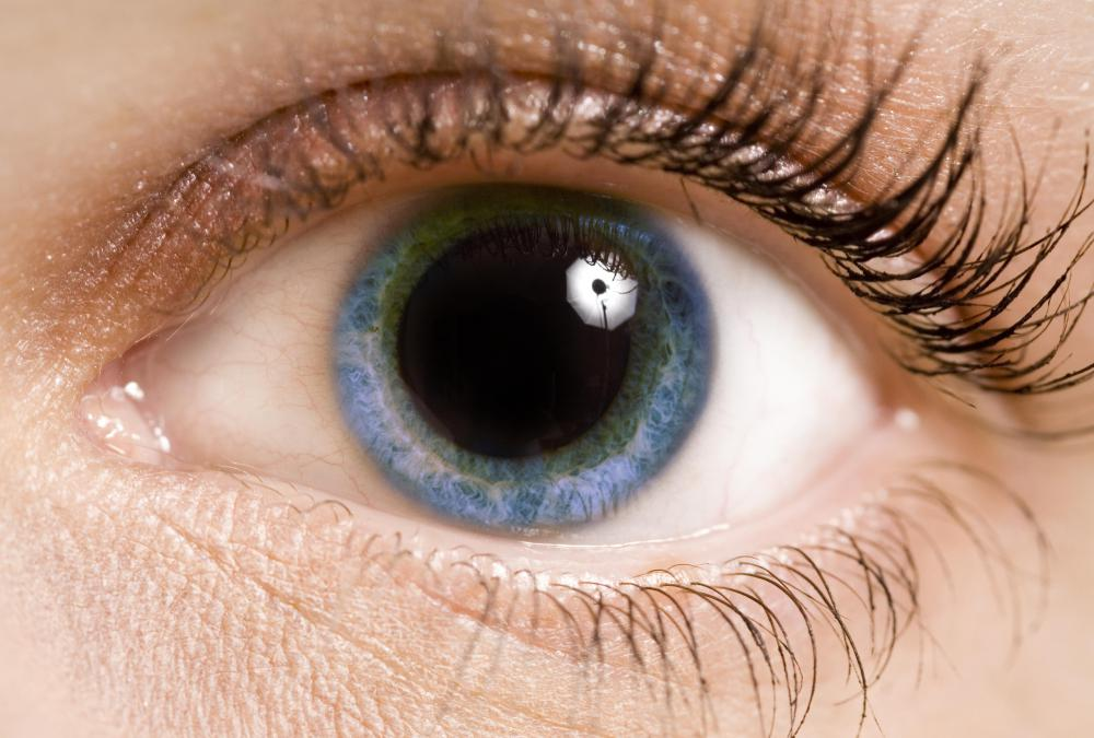 The pupil dilates and contracts to control the amount of light which enters the eye.