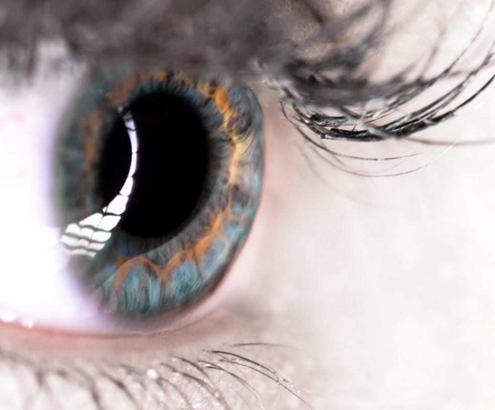 There are six extraocular muscles that allow for eye movement.
