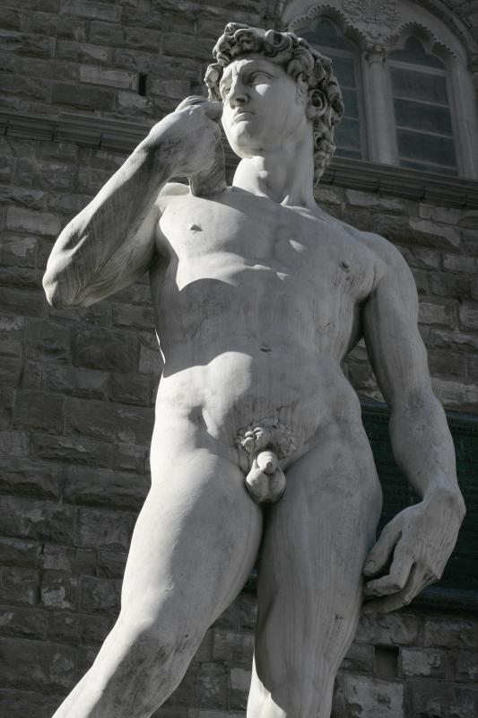 Michelangelo's David is an example of representational art.
