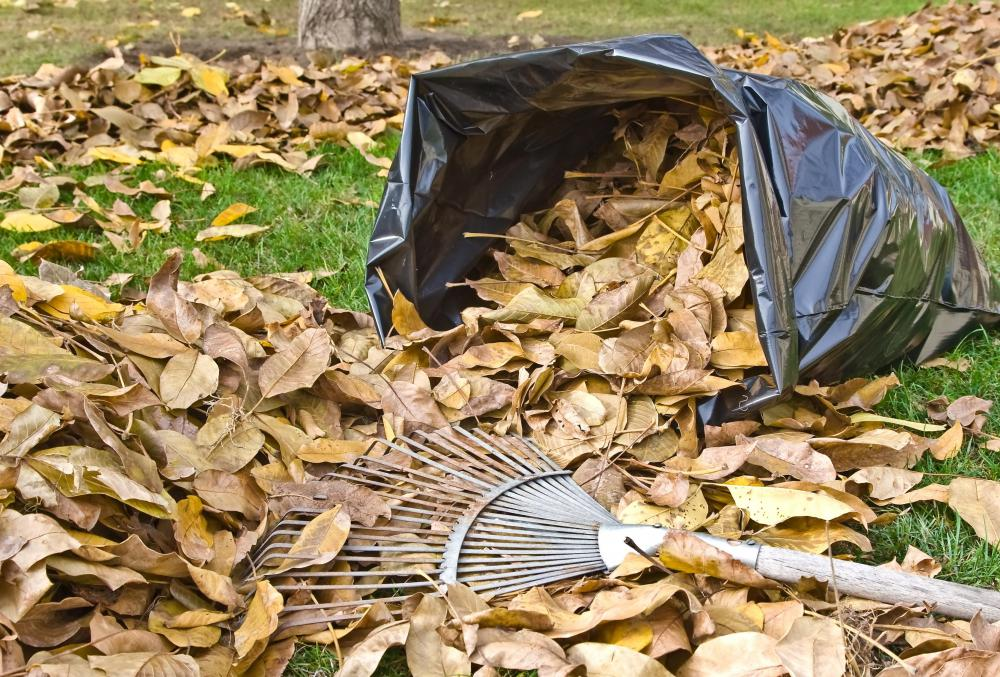 Using a rake to rake leaves is better for the environment than an electric leaf blower.
