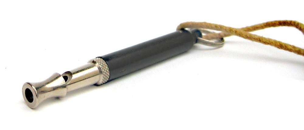 Blowing a dog whistle might deter some barking dogs.