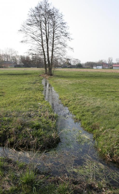 A water easement may refer to a drainage system.