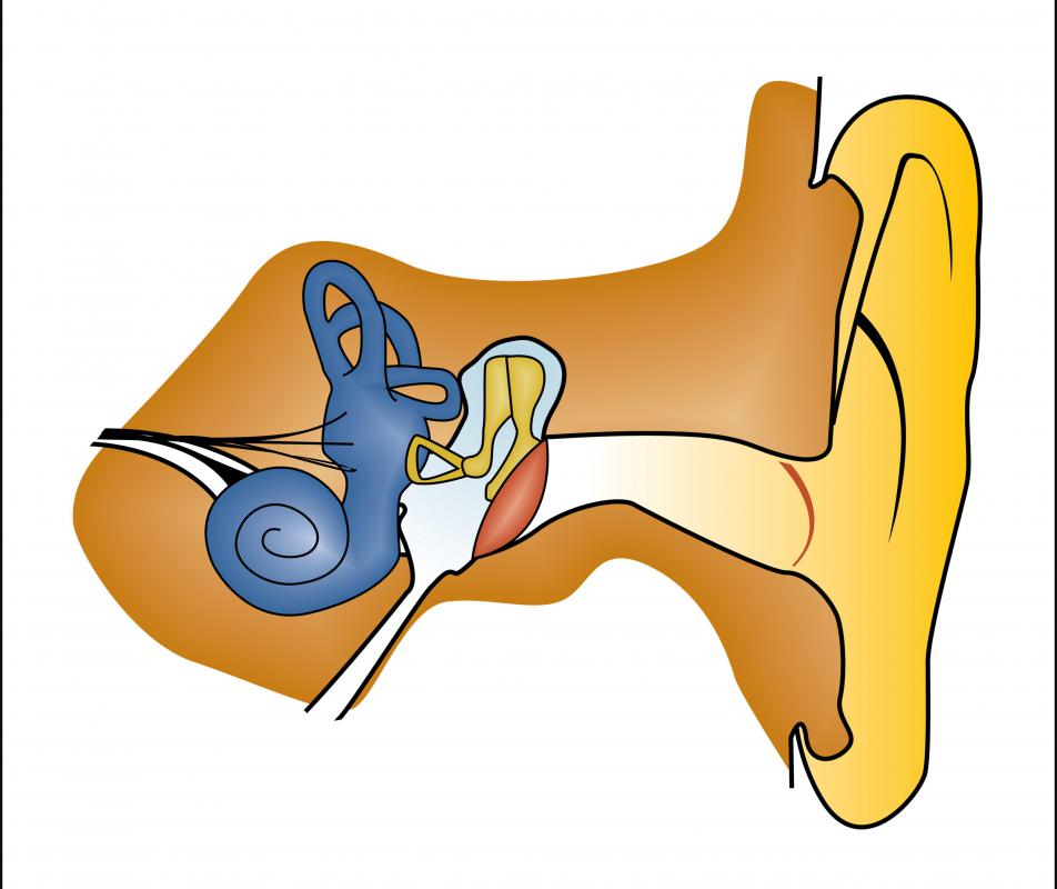 Infections of the middle ear can create ear pressure.