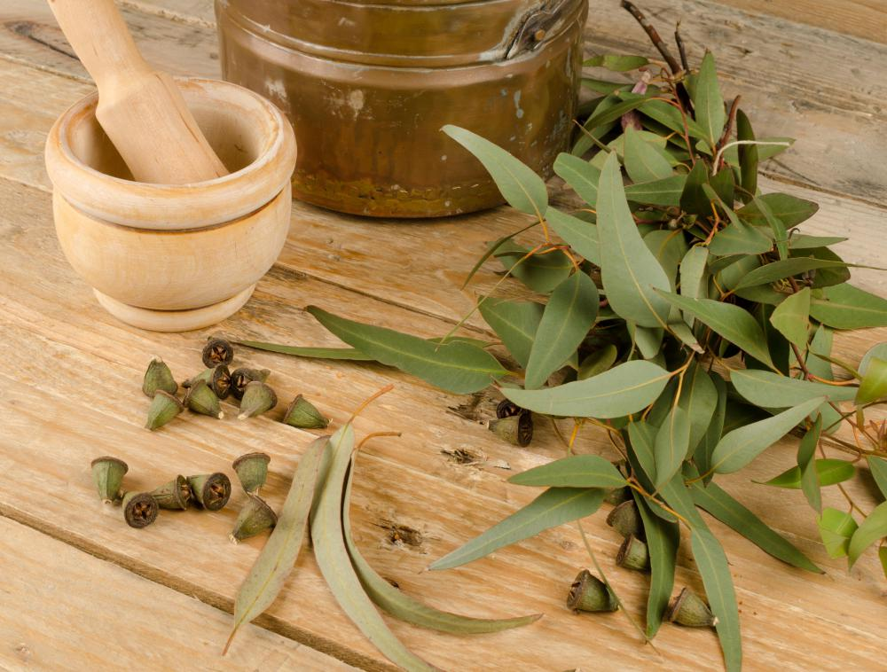 Eucalyptus can be used to help relieve a stuffy nose.