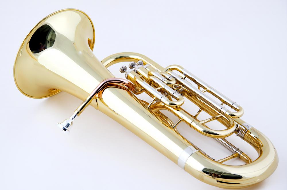 The brass family includes the euphonium, which is similar to a tuba but has a higher pitch.