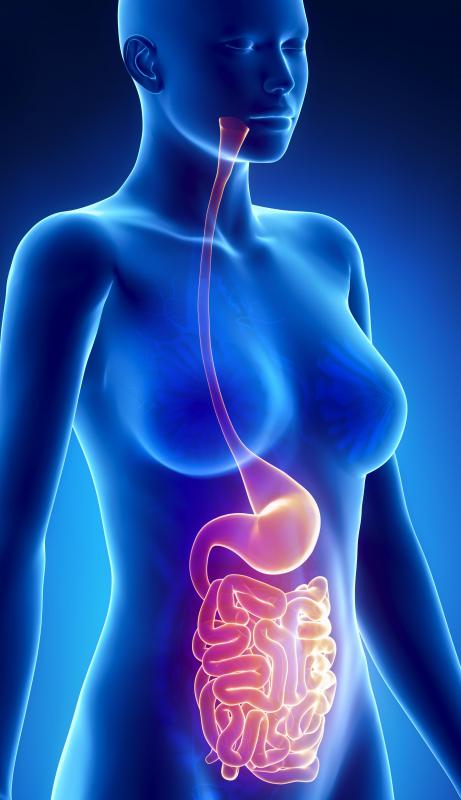 It is estimated that half of all people have precancerous lumps in their intestines.