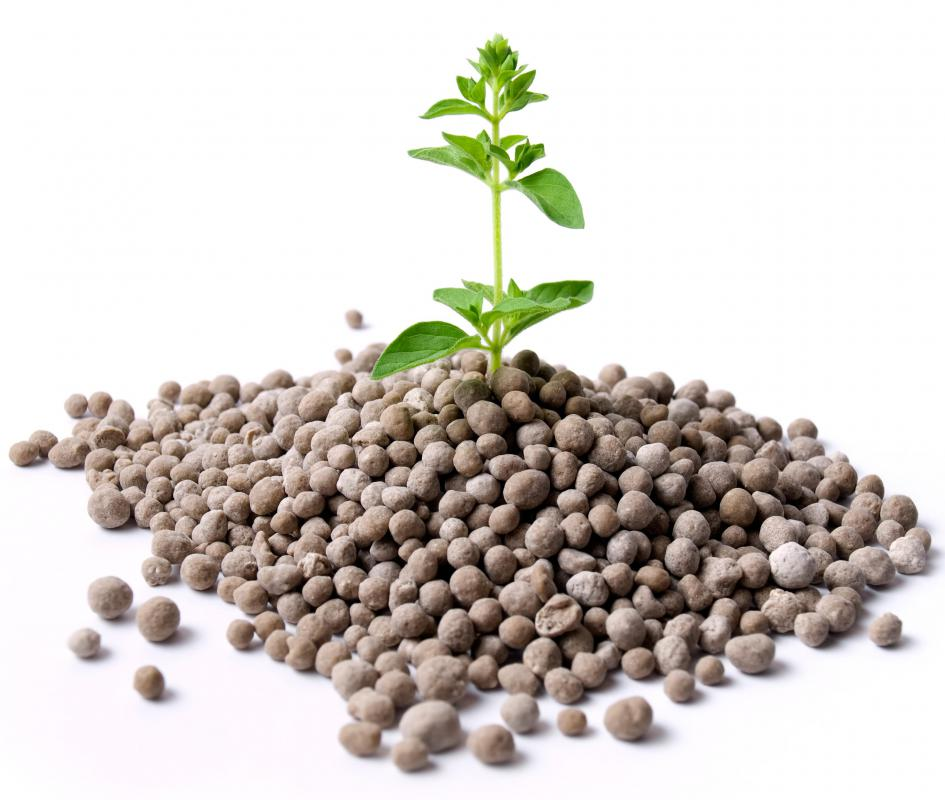 Chelated iron may be included in premixed combination fertilizers.