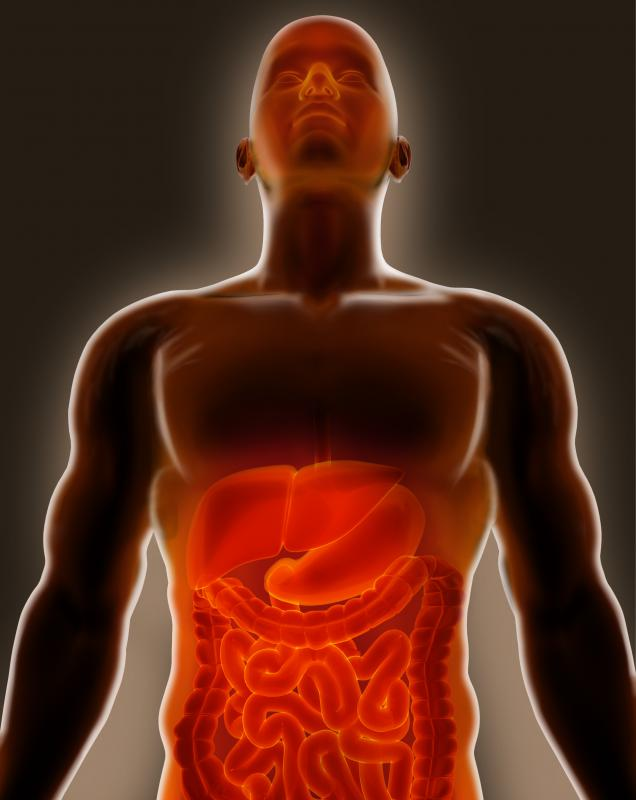Flatulence is the presence of excessive gas in either the stomach or intestinal track.