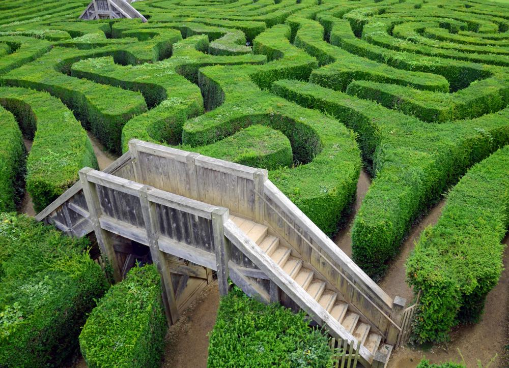 Mazes are sometimes made from hedges.