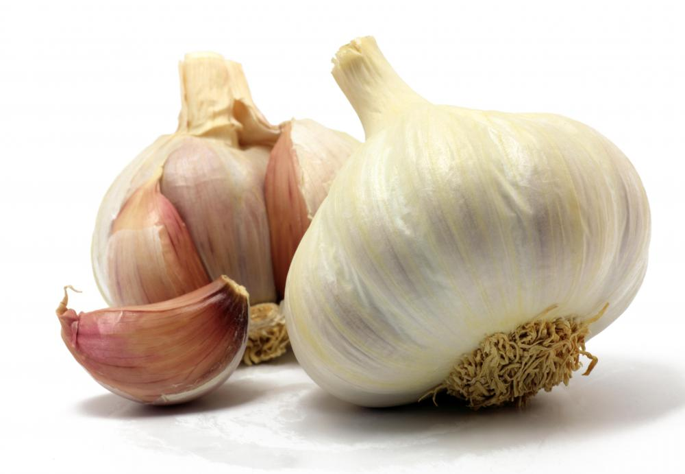 Garlic is beneficial when treating a chest congestion.
