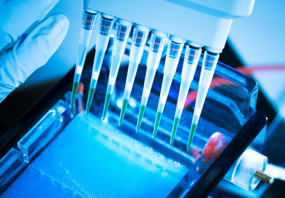 In the gel electrophoresis process, agarose gel is used to screen DNA and RNA molecules.