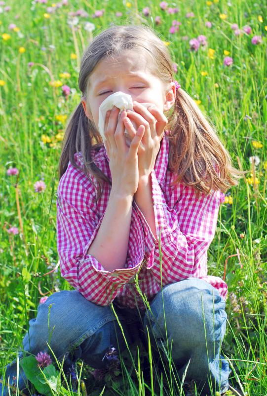 A differential diagnosis of a runny nose might consider hay fever as well as colds.