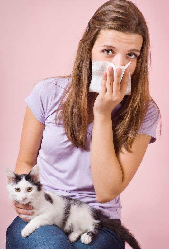 Histamine reactions can be triggered by exposure to cats or other animals.