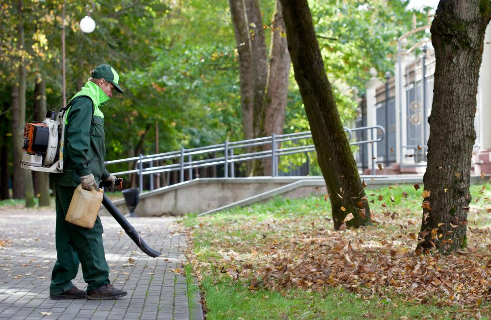 An electric cordless leaf blower is lighter and less expensive than gasoline powered units.