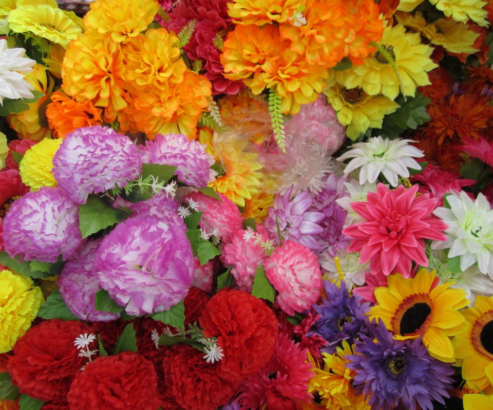 Many florists showcase their plants in flower shows for commercial purposes during a flower festival.