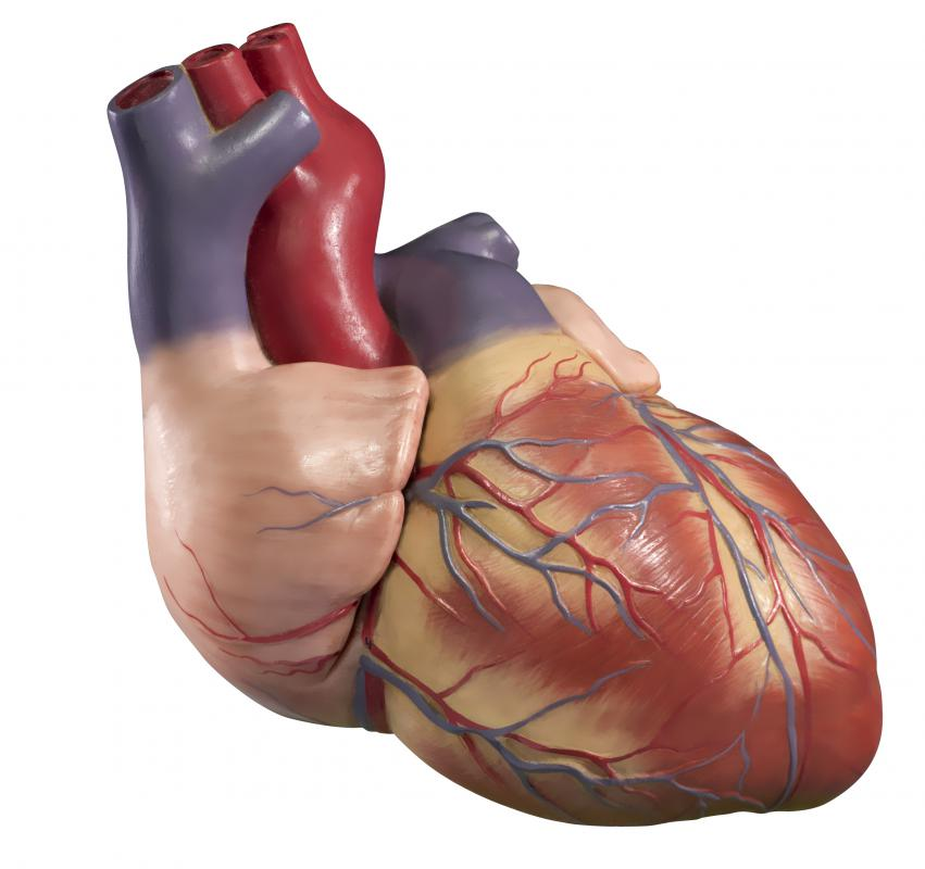 An increase or enlargement in the size of the right ventricle of the heart is called right ventricular hypertrophy.
