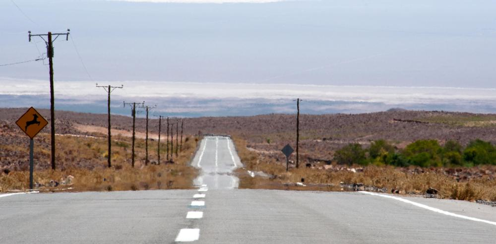 "The ""Extraterrestrial Highway"" can lead a person to Area 51."