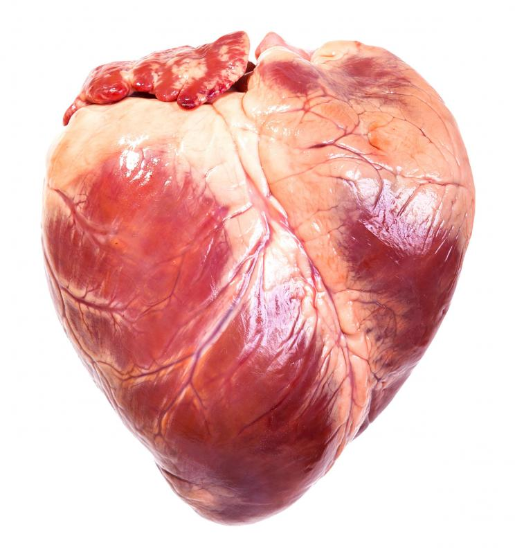 Minor defects in the heart can sometimes be repaired with a purse-string suture.