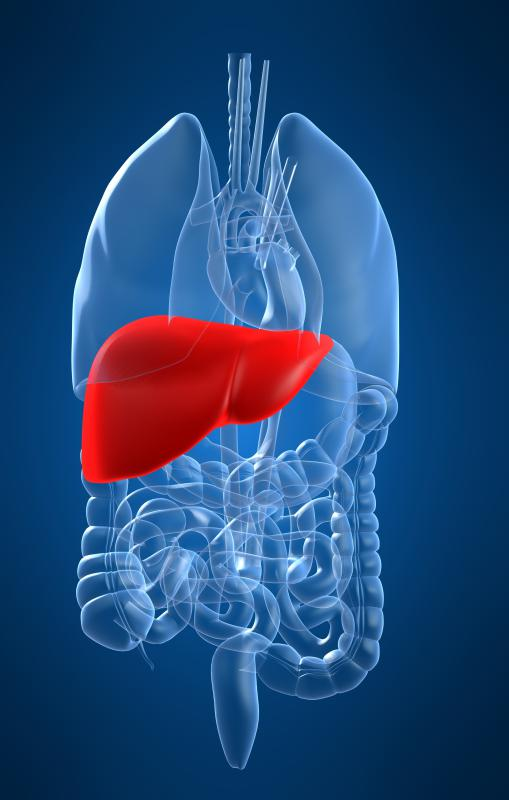 A person with symptoms of cholangitis may need to undergo tests to determine any dysfunction of the liver.