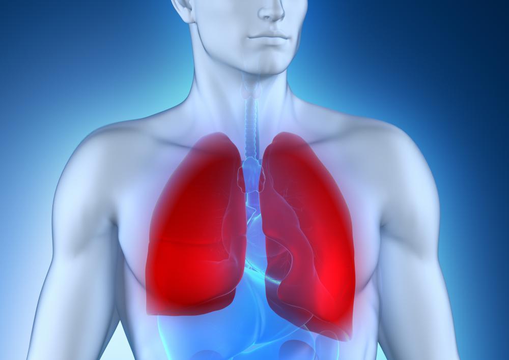 Lung inflammation may cause discolored sputum.