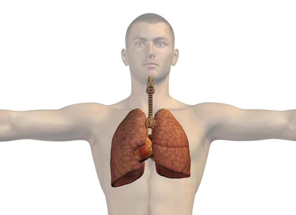 A blood clot in the lungs may cause a right bundle branch block.