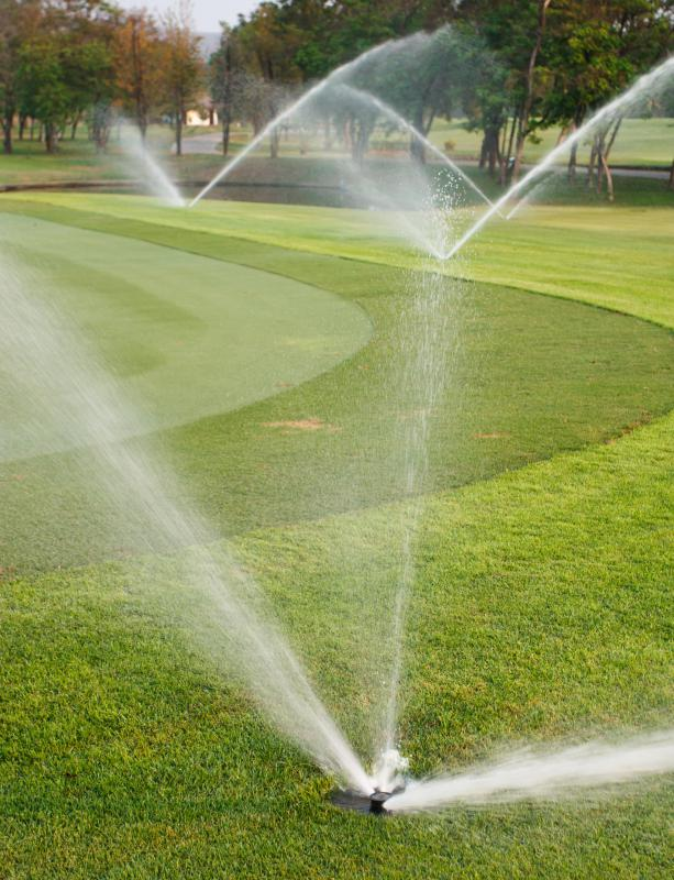 Sprinkler valves control the flow of water within an irrigation system.