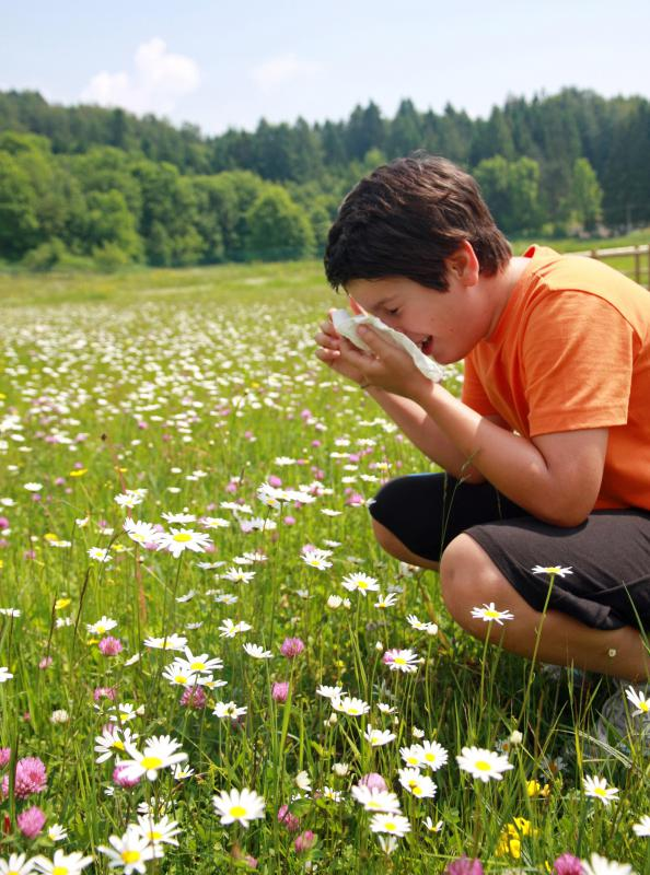 Some people experience allergies only seasonally, when the offending pollen is in the air.