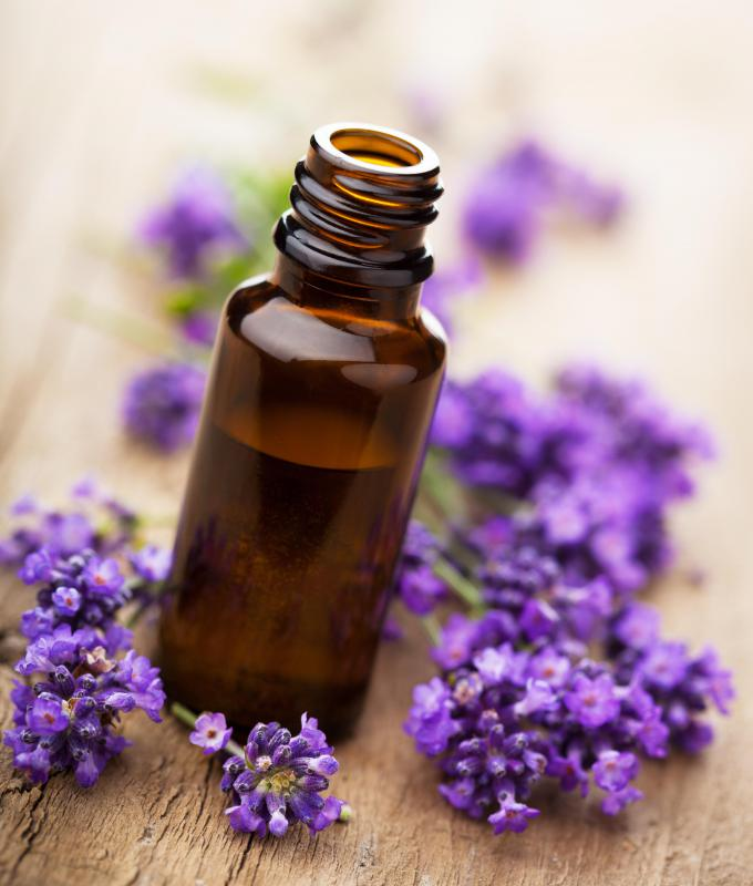 Lavender oil is used as an antiseptic and as an ingredient in many other products.