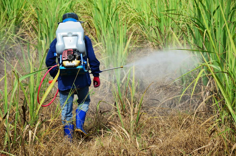 Herbicides kill certain types of plants, such as weeds.