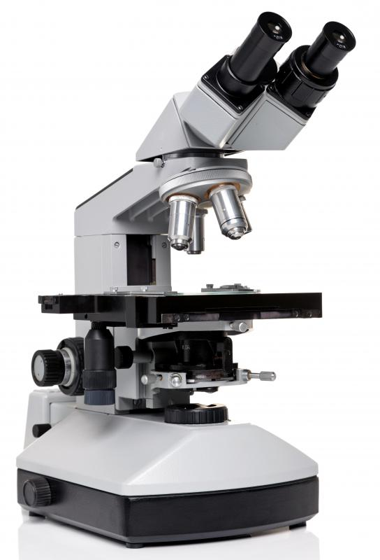 Since the debut of the scientific method, technological progress has been advancing rapidly and has included the development of powerful scientific instruments, such as the microscope.