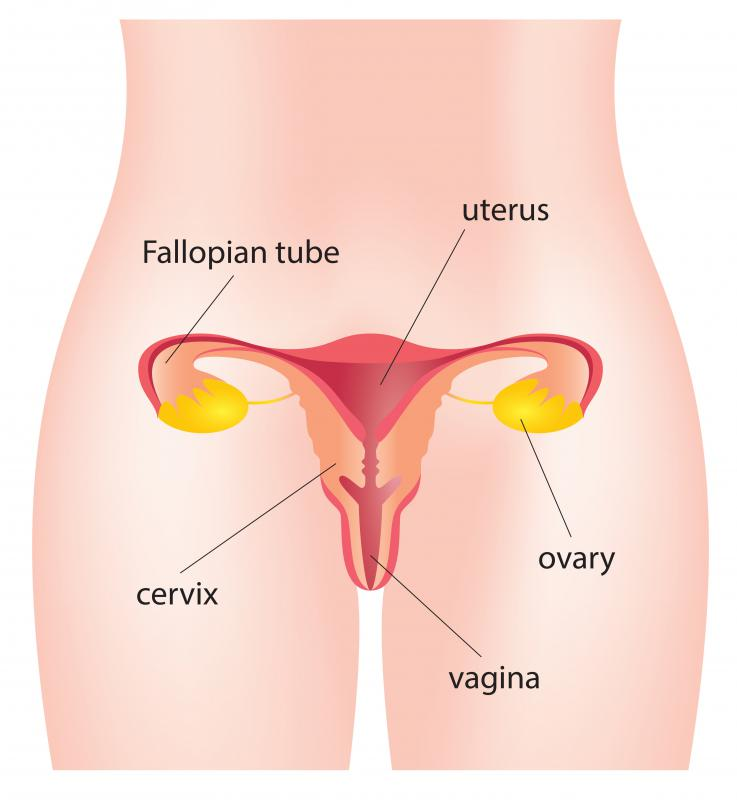 Semen which fails to liquefy less than an hour after ejaculation is likely too thick to easily flow toward the cervix.