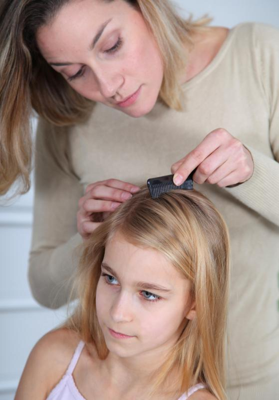 Close inspection of a person's hair and scalp may be necessary to spot head lice and eggs.
