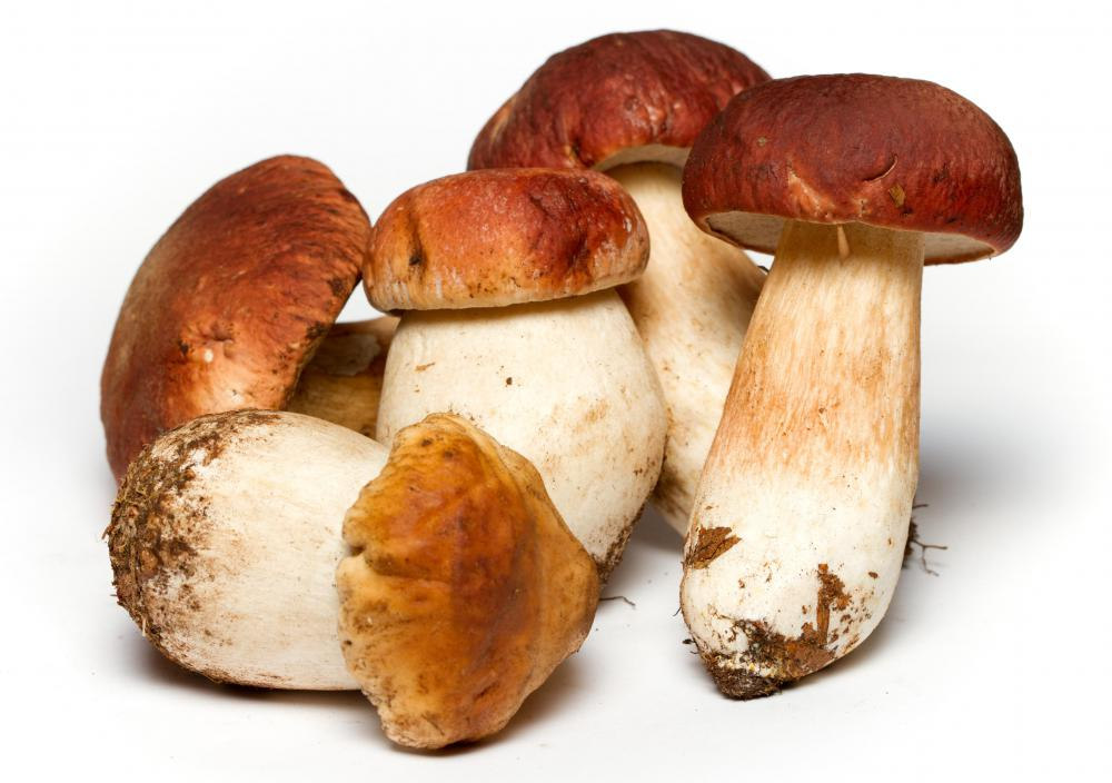 Mushrooms contain Vitamin H, which may be more beneficial when ingested with food.