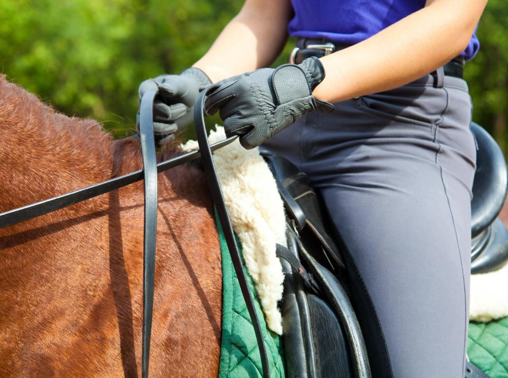 Horseback riding can lead to a dysfunction of pelvic floor muscles.