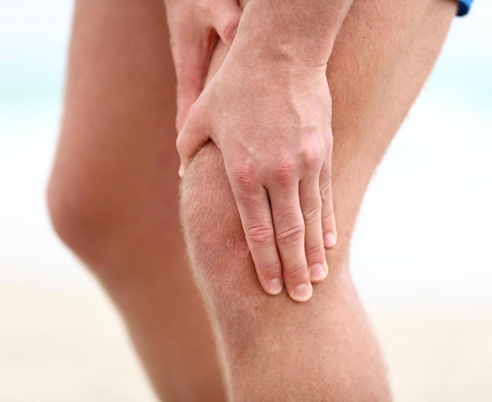 Many human joints are cushioned by cartilage.