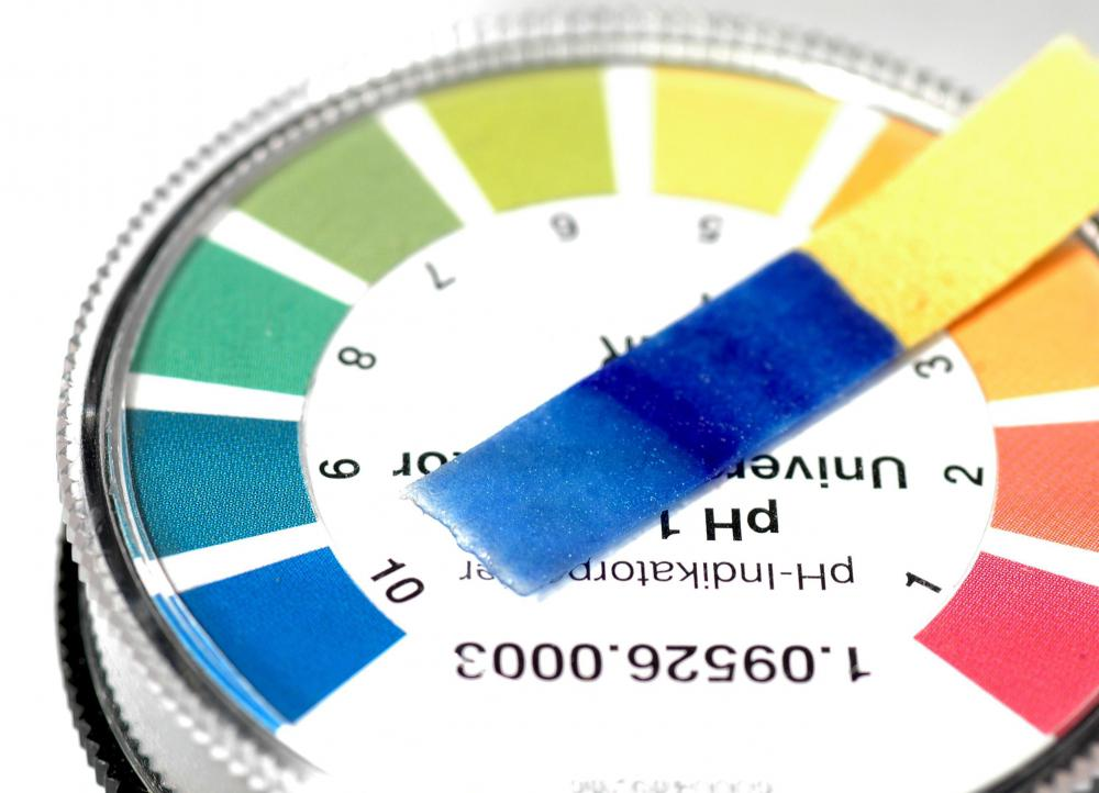 A pH test. Acid-free paper has a pH value of 7 or higher.
