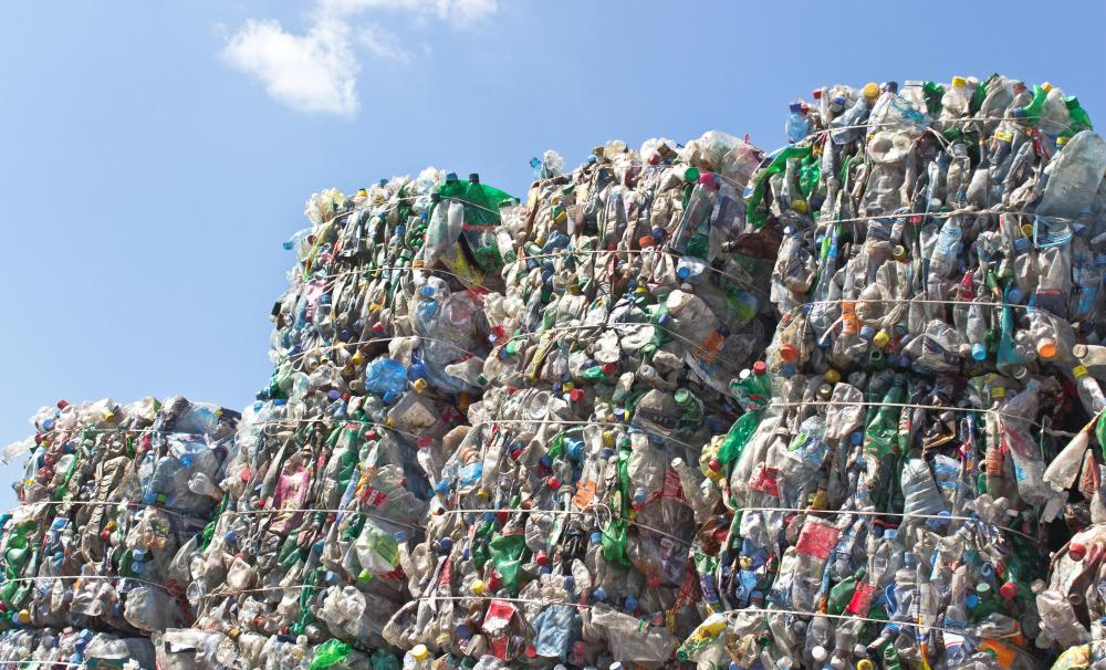 Many drink bottles are recycled by being reheated and turned into polyester fibers.