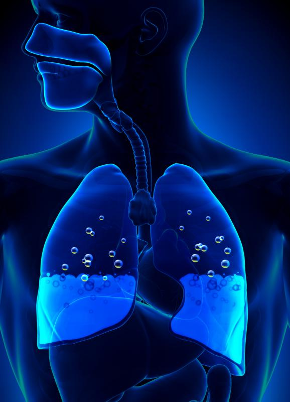 Bronchitis and pneumonia are characterized by fluid accumulation in the lungs.