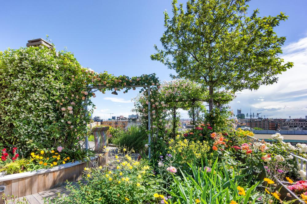 Rooftop gardens add to a city's sustainability.