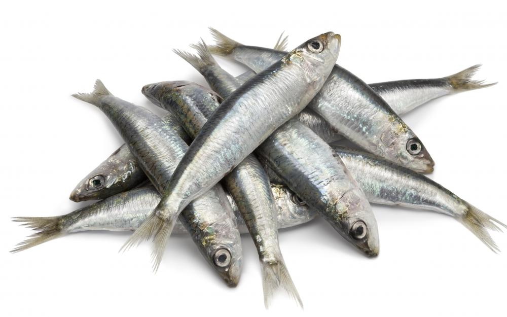 Sardines, because they are a source of purines, can aggravate gout.